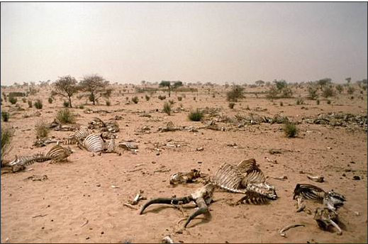 Sahel_region_hostile_la vie_mali_mauritanie_niger_algérie